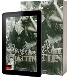 COM_BPUBLISHER__COVER Engel der Schatten